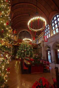 The 35-foot tall Christmas Tree is the star of Christmas at Biltmore House - in the Banquet Hall, Nov 2014