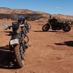 Roadtrip Factory inaugure Terres de Scrambler au Maroc cette semaine ! 1450km pour découvrir les secrets de l'Atlas en Iron 883 version Scrambler. Première étape de Marrakech à Aït Ben Haddou en passant par Tizi'n Tischka Taddert et Telouet. #FindYourFreedompic.twitter.com/laGFtdTnGS Iron 883, Marrakech, Motorcycle, Twitter, Vehicles, Top, Morocco, Motorcycles, Car