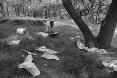 """<div class=""""artist""""><strong>Tod Papageorge</strong></div><div class=""""title_and_year""""><em>Central Park, Untitled</em>, 1989</div><div class=""""medium"""">Silver gelatin print, printed later </div><div class=""""dimensions"""">50 x 61 cm</div><div class=""""edition_details"""">Edition of 20</div>"""