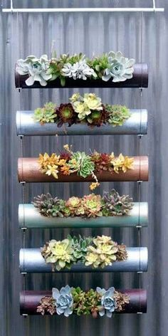 Steel pipe planters.