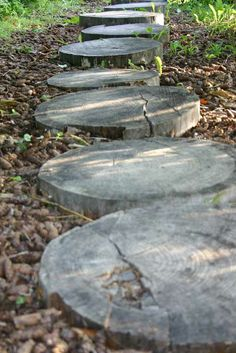 Concrete Patio, Hiking Trails, Vegetable Garden, Gardening Tips, Stepping Stones, Paths, Cottage, Yard, Cabin