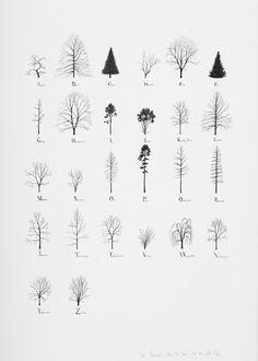 KatieHolten.TreeAlphabet.2015_small.jpg