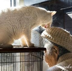 Miyoko Ihara has been taking photographs of her grandmother, Misao and her beloved cat Fukumaru since their relationship began in 2003. Their closeness has been captured through a series of lovely photographs. 1-01-13, courtesy of Miyoko Ihara.