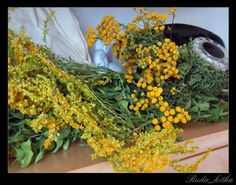 Superfoods, Natural Remedies, Health Fitness, Soap, Herbs, Vegetables, Garden, Nature, Flowers