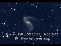 Sit back and watch a star explode. The actual supernova occurred back when dinosaurs roamed the Earth, but images of the spectacular event began arriving last year. Supernova 2015F was discovered in nearby spiral galaxy NGC 2442 by Berto Monard in 2015 March and was unusually bright -- enough to be seen with only a small telescope. The pattern of brightness variation indicated a Type Ia supernova