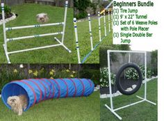 Dog Agility Equipment - Tire Jump, Weave Poles, Single Jump & Tunnel - Beginners Bundle / Package Weave Poles