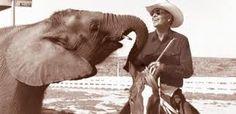 The marlboro man and his elephant Amy
