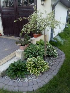 70 Awesome Front Yard Rock Garden Landscaping Ideas - Garden Awesome Front Garden Rock Garden Landscaping Ideas awesome ideen landschaftsgestaltung steingarten Idea, tactics, also quick guide with respect to receiving the ideal result as Garden Ideas To Make, Small Garden Planting Ideas, Small Garden On A Budget, Small Entry Garden Ideas, Small Garden Decoration Ideas, Outdoor Entryway Ideas, Small Garden Inspiration, Tiny Garden Ideas, Balcony Decoration