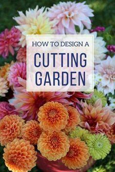 How to Design a Backyard Cutting Garden - Longfield Gardens #LongfieldGardens