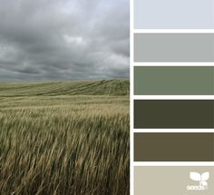 horizon hues, by design seeds Colour Pallette, Colour Schemes, Color Patterns, Color Combos, Design Seeds, Josef Albers, Color Swatches, Color Theory, House Colors