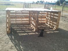 Shelter for 2 goats - Page 3 - The Goat Spot - Goat Forum Goat Shelter, Horse Shelter, Animal Shelter, Sheep Shelter, Goat Playground, Goat Shed, Small Goat, Show Goats, Goat House