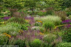 Our Work - John Schoolmeesters - Planting Designer