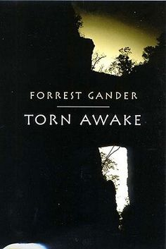 Torn Awake by Forrest Gander