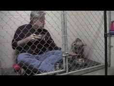 Kind-hearted man eats his breakfast with a shy shelter dog (video) | MNN - Mother Nature Network