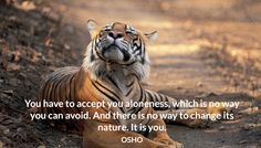 You have to accept you aloneness, which is no way you can avoid. And there is no way to change its nature. It is you. OSHO #accept #aloneness #nature #you #osho