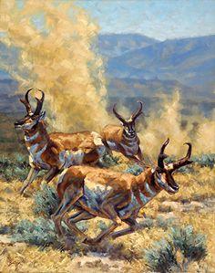 Like a Roaring Lion Wildlife Paintings, Wildlife Art, Animal Paintings, Animal Drawings, Deer Stencil, Hunting Art, American Animals, Cowboy Art, Western Art