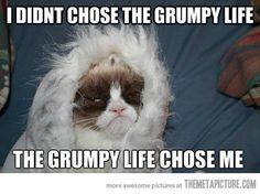 The grumpy life…