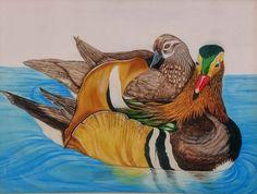 Print of Love Birds Duck Art, Mandarin Duck, Nature Animals, Love Birds, Bird Art, Art Oil, Ducks, Painting, Sunshine