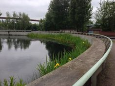 Inspirasjon - konstruksjoner, vegetasjon. Foto fra Landschaftpark Duisburg-Nord