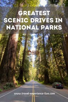 Overview of the best scenic drives in national parks of America, from the Crater Lake Rim Drive to Shenandoah's Skyline Drive and the Going-to-the-Sun Road in Glacier National Park National Parks Usa, Crater Lake, Bridal Dresses, Grand Canyon, Skyline, America, Sun, Travel, Bride Dresses