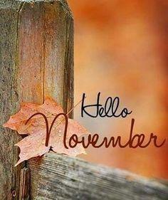 #fall #autumn #cozy #falltime #welovefall #orange #red #autumnweather #fallweather #autumnleaves #photography #pumpkins #instapic #sweaterweather #crispair #psl #november #fallleaves #colorful #leaves #fallishere #view #wood #pumpkin #autumnlove #autumncolors #rain #seasonsfix