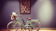 #mollybears #vintagestyle  Vintage bike by Ipek Erdur