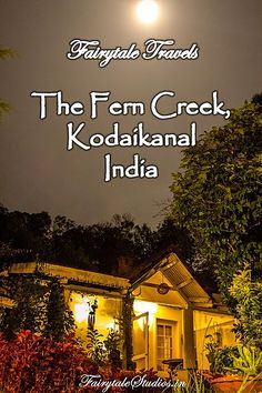 Luxury in an Enchanted Forest - Read our review of this boutique hotel in Kodaikanal, India which offers a unique experience of glamping where beautiful nature meets luxury. #fairytalestudios #fairytaletravels #hotelreview #accomodationreview #offbeat #plactostay #ferncreek #kodaikanal #india #travelogue #travelblog #traveldiaries #glamping #enchantedforest  #hillstation #tamilnadu #luxury #boutiquehotel