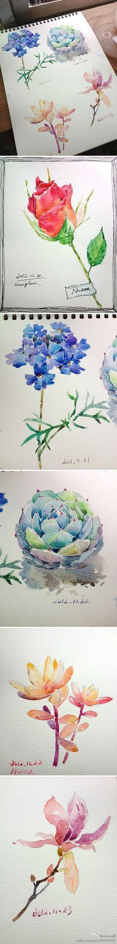 水彩 插画手绘 minna桃的照片