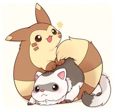 Furret and Ferret Cute Animal Drawings, Cute Drawings, Anime Animals, Cute Animals, Barbie Funny, Deadpool Pikachu, Pokemon Breeds, Cute Pokemon Pictures, Cute Pokemon Wallpaper
