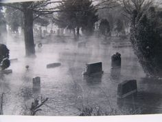 Forest Hill Cemetery after some flooding