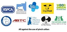 'Feeling the Pinch?' – Charities & others unite against pinch collars | Animal welfare blog | RSPCA Insights