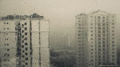 Falling rain cinemagraph // Teary Eyes by gatchaman. Teary Eyes, Cinemagraph, Landscape Photography, Concept, Creative, Gifs, Rain, Inspirational, Inspired
