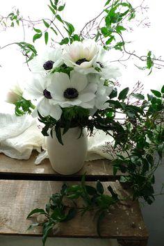 white anemone and jasmine White Anemone Flower, Flower Vases, Navy Yellow Weddings, Wedding Bouquets, Wedding Flowers, February Wedding, Delphinium, Floral Arrangements, Flower Arrangement