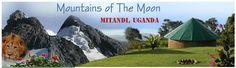På Mitandi får du gratis kost og losji i et av verdens vakreste fjell-, safari- og turområder. Du vil få meningsfulle, givende og lærerike o...