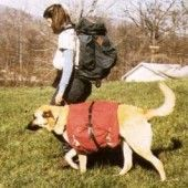 Sew Your Own Dog Pack
