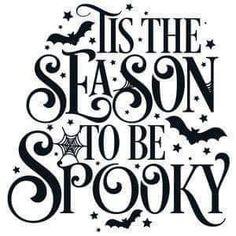 Halloween Tags, Image Halloween, Feliz Halloween, Halloween Quotes, Holidays Halloween, Halloween Shirt, Scary Halloween, Halloween Snacks, Halloween Crafts