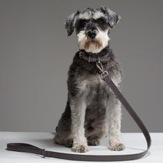 Fred leather dog lead in Dark Grey is a handsome edition to our Pour Homme collection. This dog lead is perfect for both smart and casual occasions. Handcrafted in England from Italian vegetable tanne