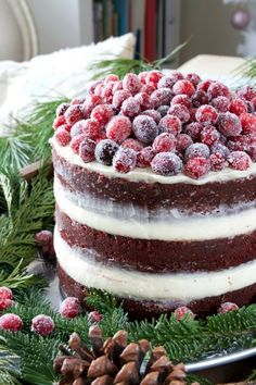 "1lifeinspired: ""Sugared Cranberry Cake """