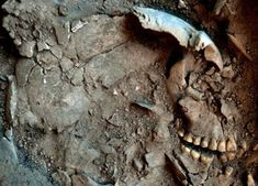 Evidence of Gruesome 9,500-Year-Old Funerary Rites Found in #Brazil