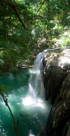 Tropical waterfall on Moyo Island in Indonesia • John Mason on Flickr #PINDONESIA