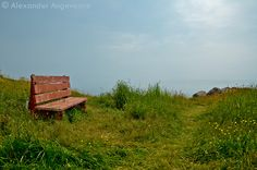 The Bench. Just sitting there, asking the be sat upon.  ~ Ferryland, Newfoundland