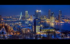 Blue Monday / Rotterdam / Euromast / Wallpaper
