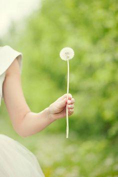 ...Make a wish