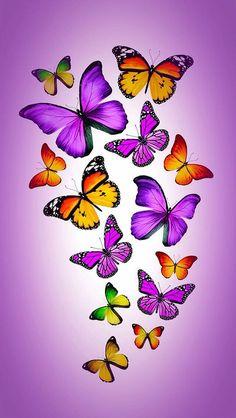 New Ideas for flowers orange beautiful butterflies Butterfly Artwork, Butterfly Background, Butterfly Drawing, Butterfly Pictures, Butterfly Painting, Butterfly Wallpaper, Butterfly Crafts, Vintage Butterfly, Beautiful Butterflies