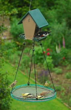 I need to make one of these! Bird feeder with removable catcher.