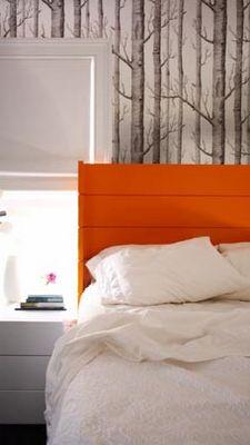 My fav birch wallpaper with a pop of orange