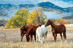 Of all creatures God made at the Creation, there is none more excellent, or so much to be respected as a horse. - Bedouin Legend Tim Cox Fine Art's October Mist is available as a reproduction. Click here: http://www.timcox.com/gallery1.html Round up some cowboy Christmas savings at www.Tim Cox.com! Get 20% off 3 with FREE s/h in the 48 contiguous United States. Use code 20120 — with Manuel Mendoza, Eduardo Loera, Lex Collins and 48 others.