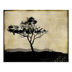 =>Sale on          Tree Silhouette Photo Art Poster           Tree Silhouette Photo Art Poster We have the best promotion for you and if you are interested in the related item or need more information reviews from the x customer who are own of them before please follow the link to see fully re...Cleck Hot Deals >>> http://www.zazzle.com/tree_silhouette_photo_art_poster-228753915703449741?rf=238627982471231924&zbar=1&tc=terrest