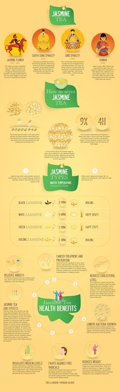 Infographics on Jasmine tea, history of Jasmine tea, health benefits, How to prepare jasmine tea.