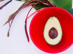 How to Plant and Grow an Avocado Tree Right in Your Apartment - Zen Where You Live Fresh Avocado, Ripe Avocado, Avocado Food, Avocado Guacamole, Healthy Meals For Two, Healthy Recipes, Salad Recipes, Healthy Food, Healthy Eating